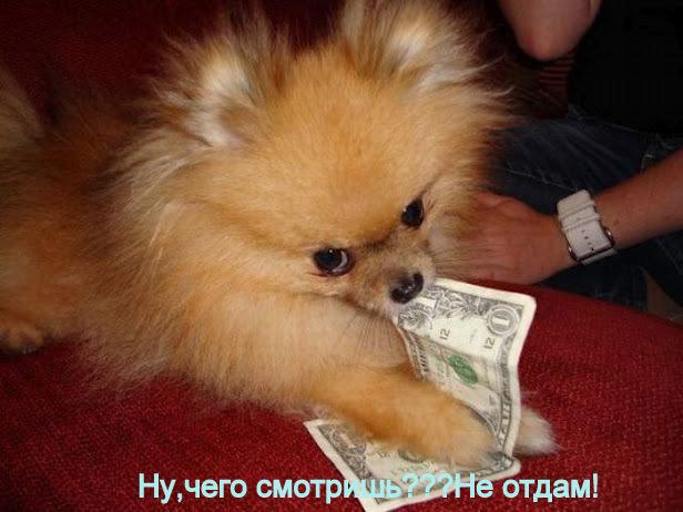 Деньги на бочку (616x462, 87Kb)