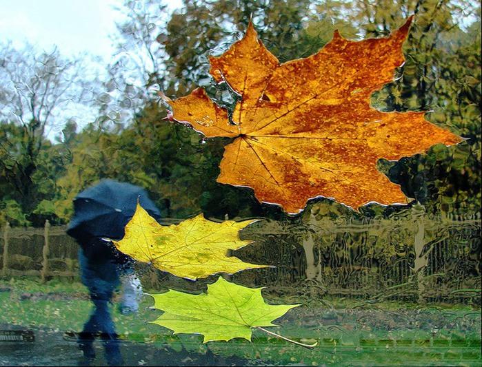 Скачать песню осень листьями шуршит