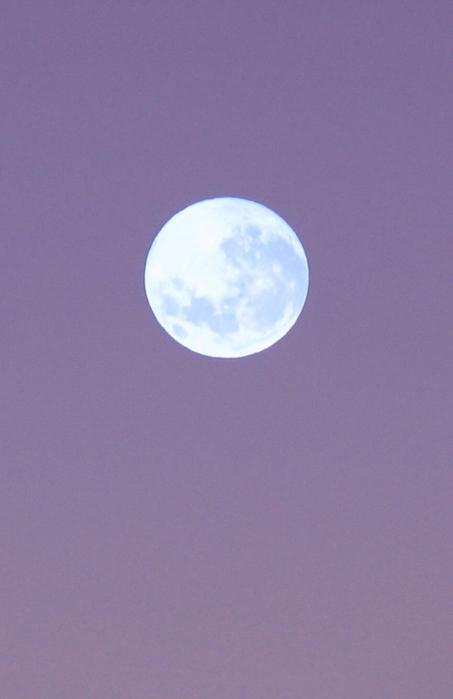 луна,фото,картинки (453x700, 148Kb)