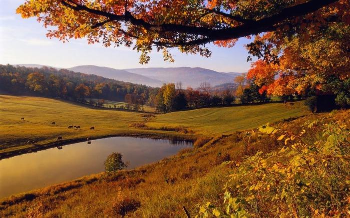 Закружила осень листопадами, заблистала хрупкой красотой... 70508