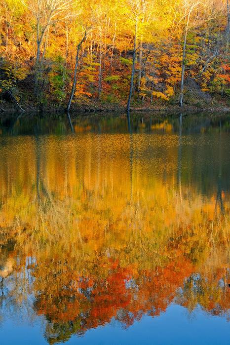 Закружила осень листопадами, заблистала хрупкой красотой... 81327