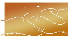 dracon (240x139, 21Kb)