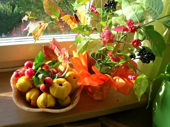Закружила осень листопадами, заблистала хрупкой красотой... 12664