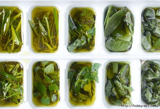 2012_07_02-Herbs04_rect800 (540x370, 147Kb)