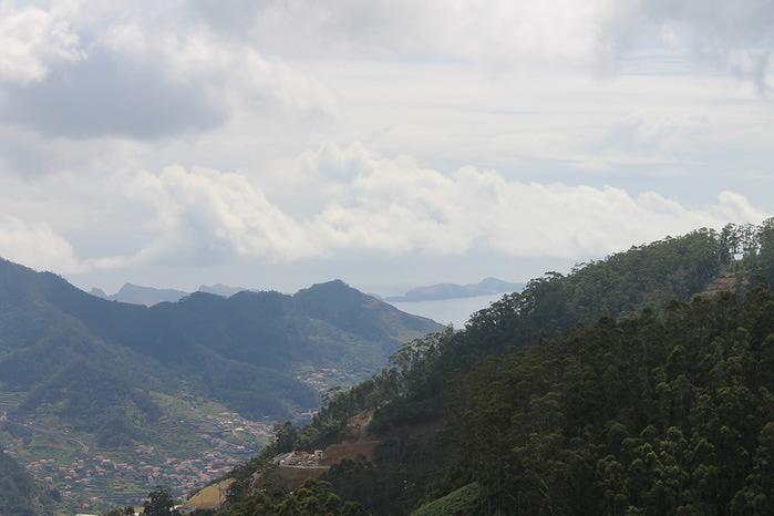 Мадейра10 (700x466, 73Kb)