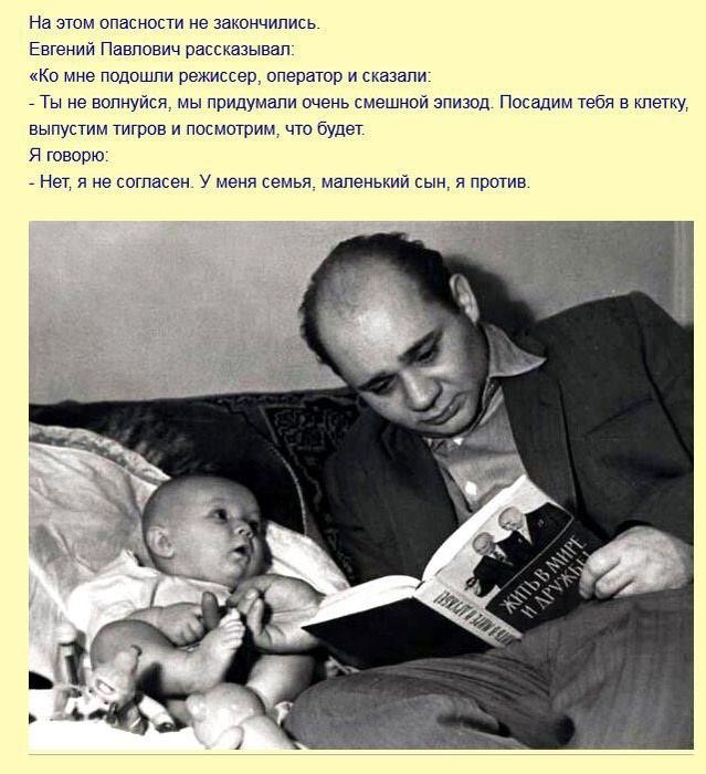 fakty_iz_filma_polosatyjj_rejjs_7_foto_3 (639x700, 86Kb)