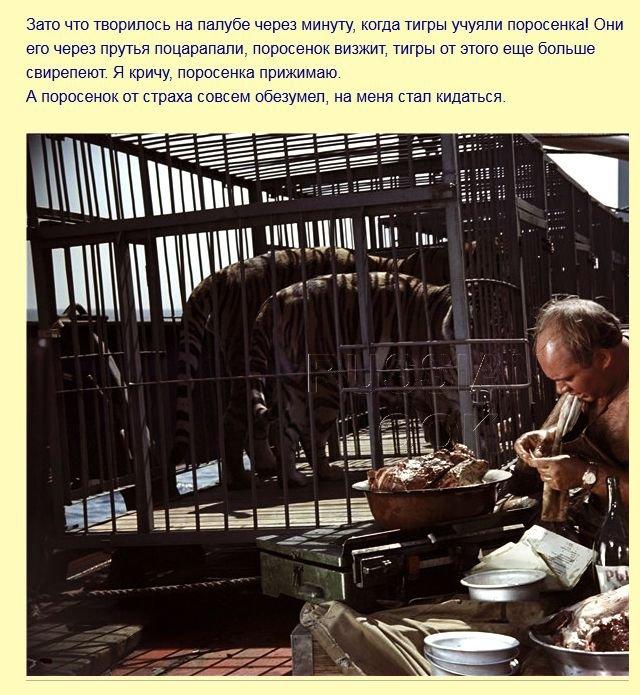 fakty_iz_filma_polosatyjj_rejjs_7_foto_6 (640x695, 114Kb)