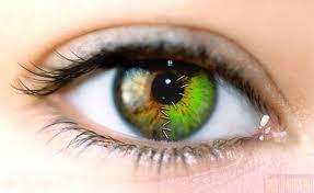 глаз (287x176, 6Kb)