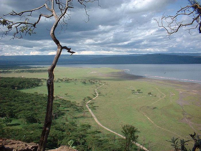 800px-Overview_lakenakuru (700x525, 91Kb)