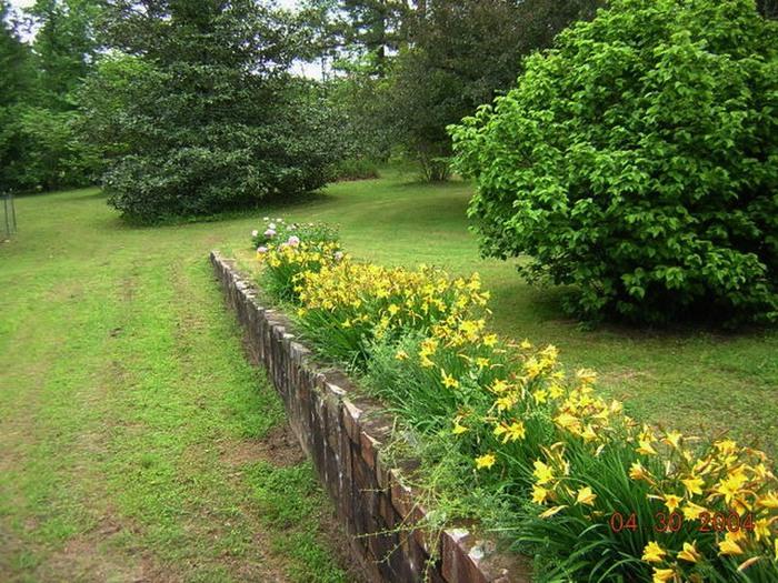 Лилейник - цветок одного дня 111 (700x525, 174Kb)