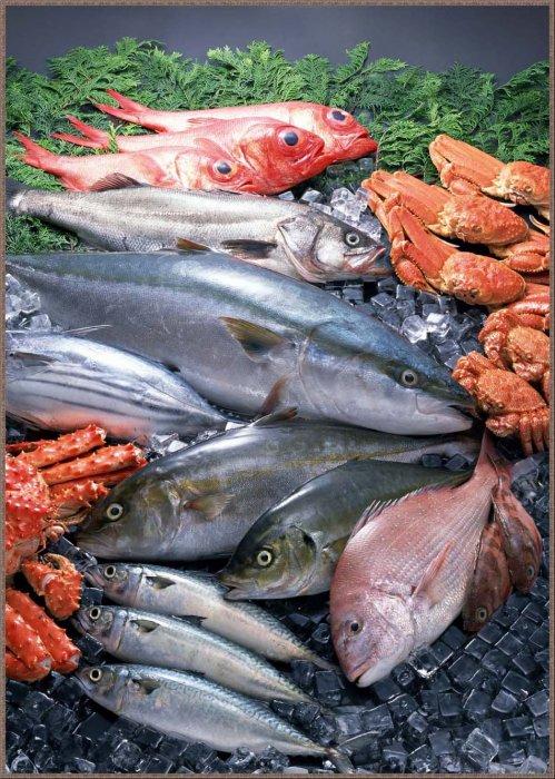 1273156689_1256794659_fish-10 (499x700, 116Kb)
