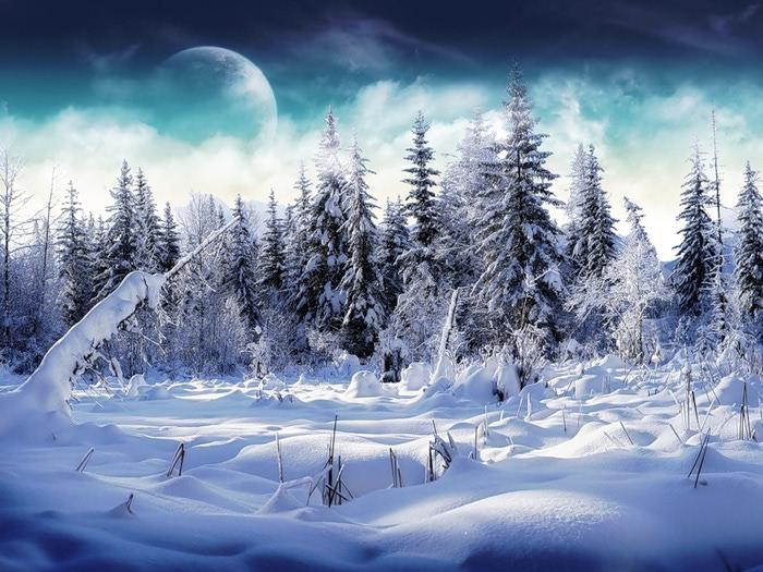 фото-зимы (700x525, 135Kb)
