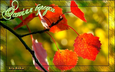 Осенняя-березка (450x281, 231Kb)