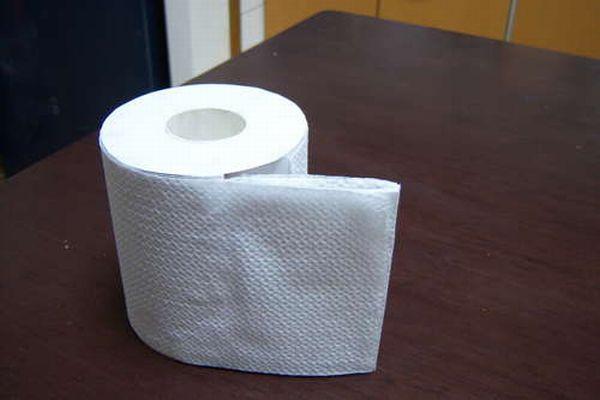 paper_roll_13 (600x400, 23Kb)