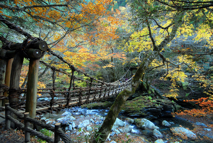 Iya Valley Vine Bridges japan (700x469, 421Kb)