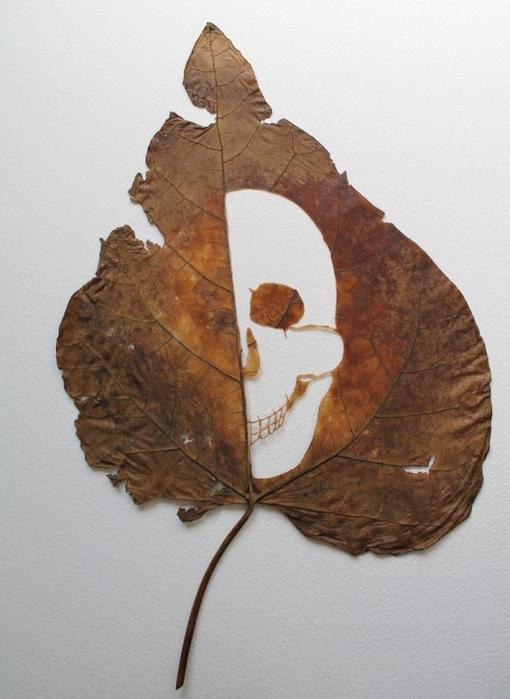 резьба на листьях1 (510x700, 227Kb)