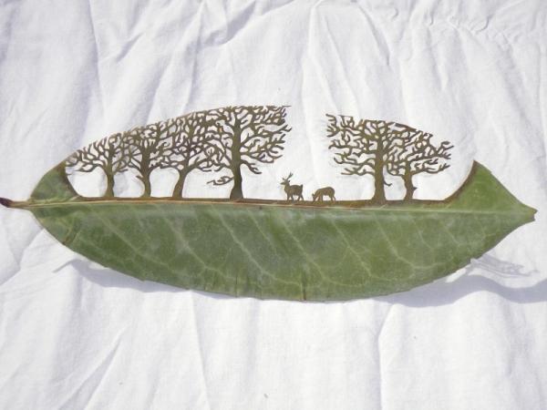 резьба на листьях10 (600x450, 168Kb)
