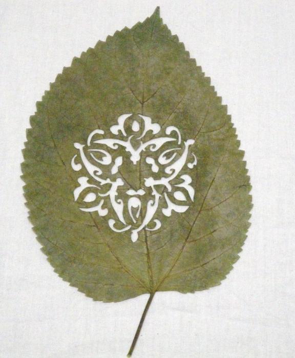 резьба на листьях12 (576x700, 279Kb)