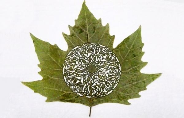 резьба на листьях16 (600x385, 145Kb)
