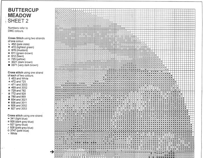 JCBM273_Buttercup_Meadow2-1 (700x537, 276Kb)