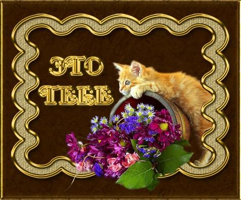 http://img1.liveinternet.ru/images/attach/c/6/91/397/91397373_0_58cef_a779680c_L.jpg