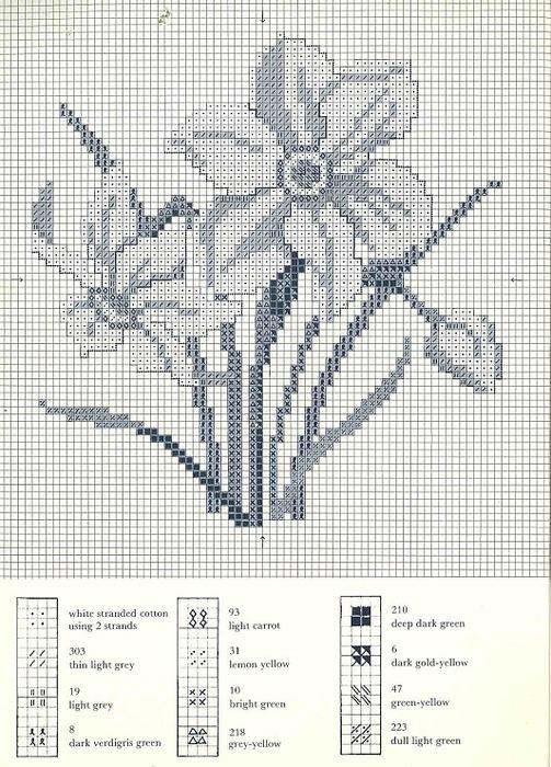 98778-f7202-22196897-m750x740 (503x700, 168Kb)