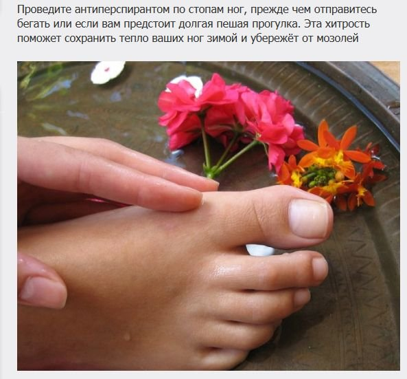 poleznye_sovety_20_foto_1 (593x551, 57Kb)