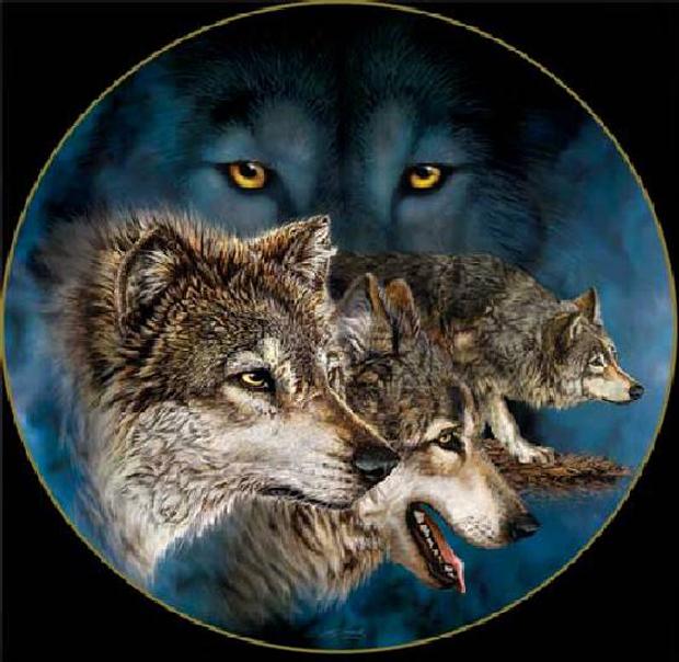 9 волков (620x604, 267Kb)