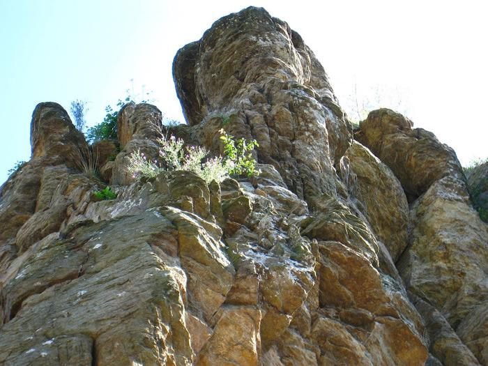 Развалины замка Аггштайн у вод Дуная 62564