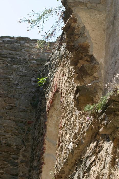 Развалины замка Аггштайн у вод Дуная 14483