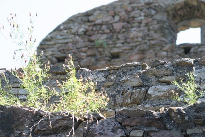 Развалины замка Аггштайн у вод Дуная 84163