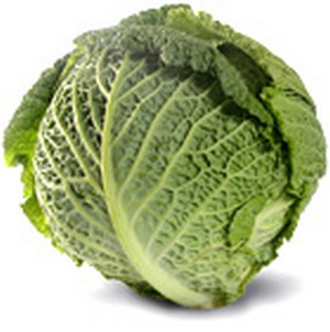 savoy_cabbage (300x302, 27Kb)
