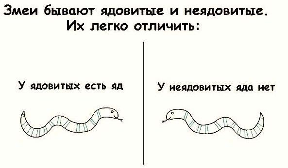 змеи бывают двух видов/1347473424_e6b80d5a759e1 (593x347, 29Kb)
