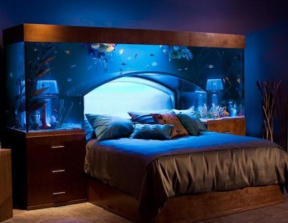 аквариум над головой (570x441, 123Kb)