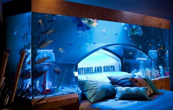 аквариум над головой2 (570x361, 132Kb)