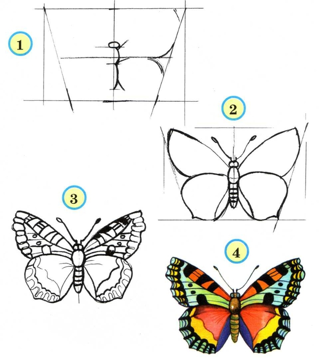 насекомые (1) (626x700, 156Kb)