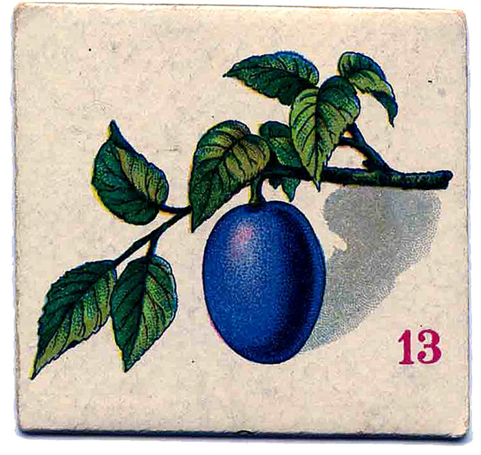 fruit-card-plum-vintage-graphicsfairy009 (700x661, 172Kb)