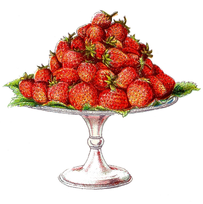 fruit-straweberries-beetons-graphicsfairy005a (697x700, 220Kb)