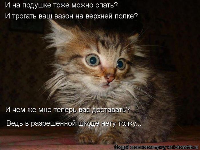 cm_20120907_01608_027 (700x550, 63Kb)