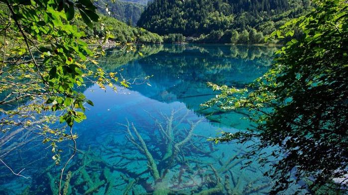 Озеро в долине Цзючжайгоу в провинции Сычуань, Китай (700x392, 142Kb)