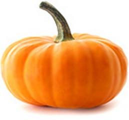 pumpkin (258x240, 11Kb)