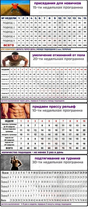 программа домашних тренировок для девушек для похудения