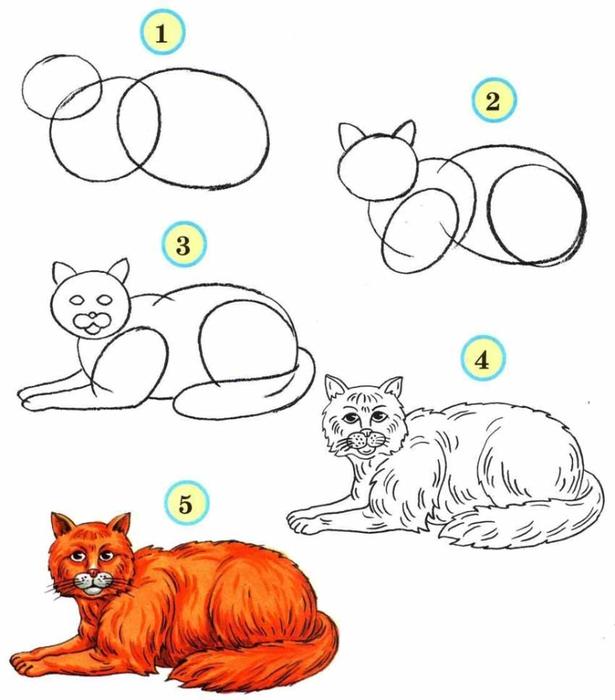 как рисовать кошку фото | Фото: kotikoshka.bigbo.ru/как-рисовать-кошку-фото