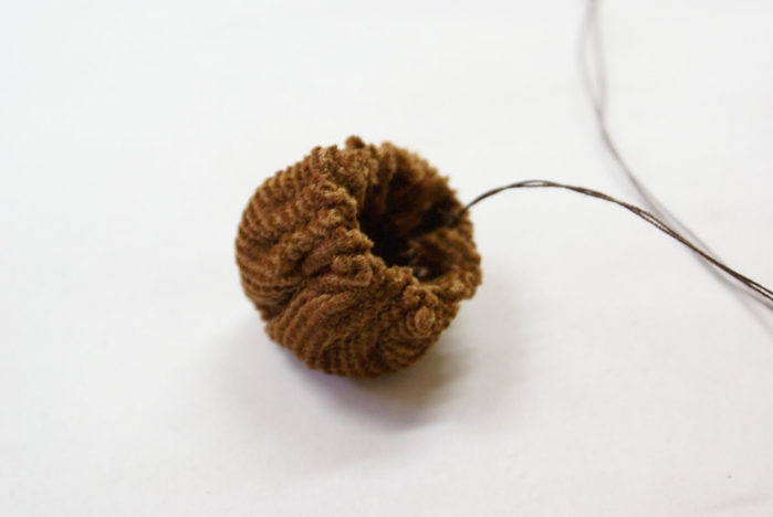acorn 5 (700x468, 89Kb)