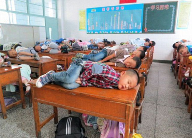 4080226_1347230802_1347223425_chinese_kids_having_midday_sleep_at_sch (640x460, 56Kb)