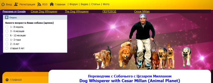 Переводчик с собачьего с Цезарем Милланом - Главная-210953 (700x273, 223Kb)