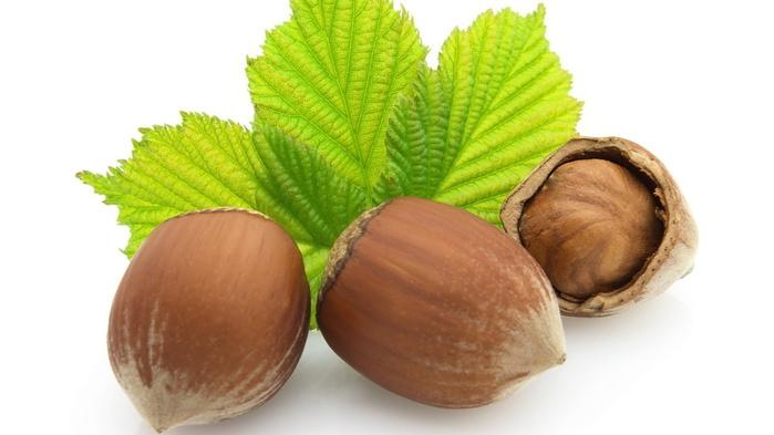 91698163 large lesnoy oreh Как растут настоящие орехи?