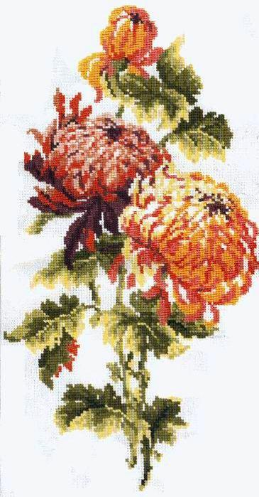 Источник. http://rutracker.org/forum/tracker.php.  Цветы.