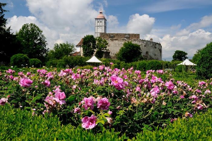 Замок Шаллабург (Schallaburg Castle) - прекрасный замок эпохи Возрождения. 50709