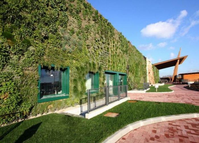 Огромный вертикальный сад на стенах. Фотографии итальянского торгового центра